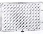 פלטה 96 תחתית F שטוחה MICROPLATE FOR SUSPENSION CULTURE